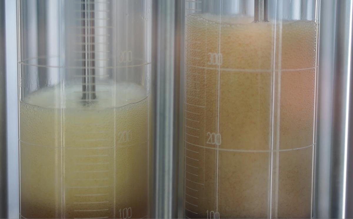 Foaming-Oils-in-TFAB-test.PNG